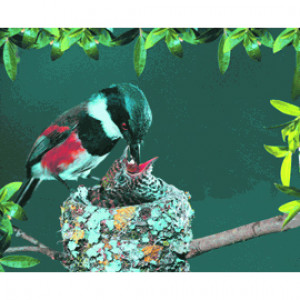 3D Ultrathin High-Precision Ergonomic Mouse Pads - Birds feeding a baby bird, 3D-MP32