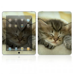 Decalskin Apple iPad Skin - Animal Sleeping Kitty