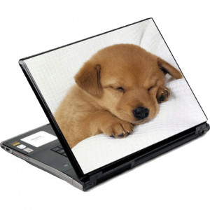 DecalSkin Sleeping Puppy Laptop Skin NAM20-14